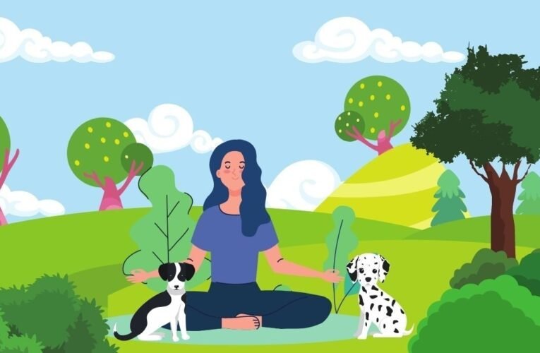 Coming back to life with mindfulness