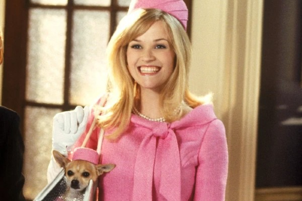 Remember Elle Woods from Legally Blonde?